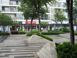 The community shopping center
