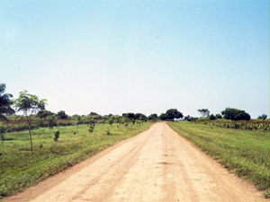 An early roadway to the property